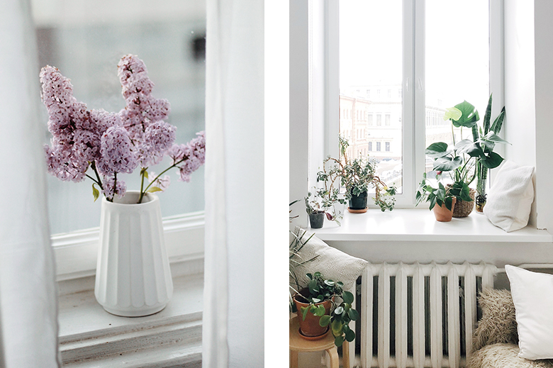 bei vasi e piante